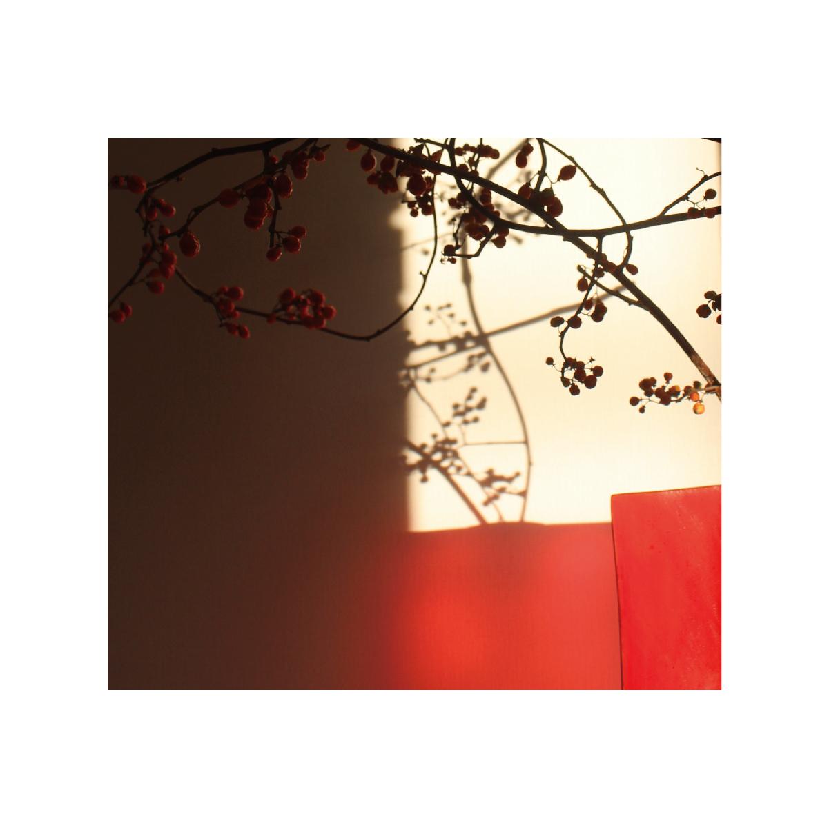 [ART WORK]赤い花器